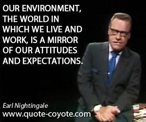 Enviroment-Mirror-Attitudes-Expectations-Nightingale