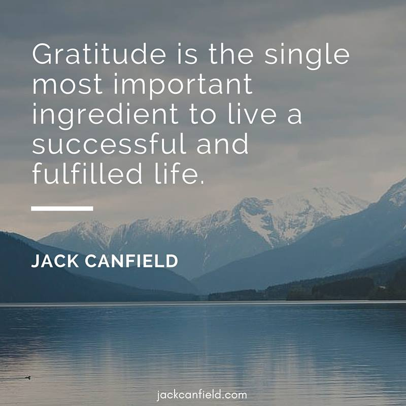 Single-Important-Life-Successful-Canfield-Gratitide